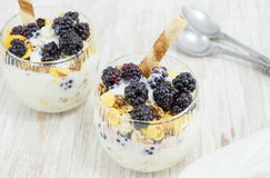 Blackberry yogurt parfait Royalty Free Stock Images