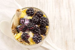 Blackberry yogurt parfait Royalty Free Stock Image