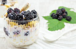Blackberry yogurt parfait Stock Photos