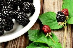 blackberrys 免版税库存照片