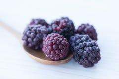 Blackberrys in un cucchiaio su una tavola immagini stock libere da diritti