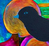 Blackbird -  The colors of birds royalty free illustration