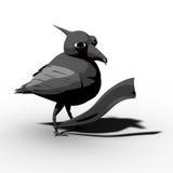 blackbirdband Royaltyfri Fotografi