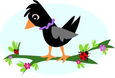 blackbirdfilialnyckelpigor Royaltyfri Fotografi