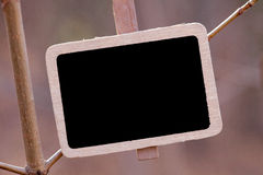 Blackboard attached to  tree branch in the forest Royalty Free Stock Photos