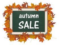 Blackboard Autumn Foliage Sale Royalty Free Stock Images