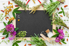 Blackboard, border from herbs, homeopathic globules. Royalty Free Stock Photo