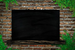 Blackboard on brick wall  and  Ivy Royalty Free Stock Images