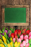 Blackboard with colorful tulip flowers Royalty Free Stock Image