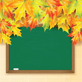 Blackboard decorated with autumn maple leaves Stock Images