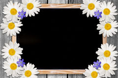 Blackboard and Flowers backgound with copy space stock photo