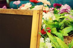 Blackboard with flowers Royalty Free Stock Photo