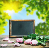 Blackboard and pink roses Royalty Free Stock Image