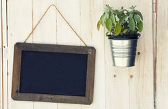Blackboard and pot with plant on wooden surface. A small blackboard with no writing, a jar containing a plant and a wooden board as a background royalty free stock photography
