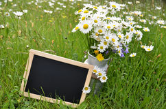 Blackboard slate shield Stock Photography