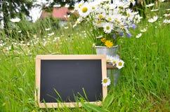 Blackboard slate shield Royalty Free Stock Image