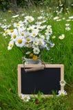 Blackboard slate shield Stock Photo