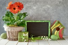 Blackboard with Spring decorations: orange gerberas, lily of the. Easter decorations on gray concrete background. Blackboard with Spring decorations: orange Royalty Free Stock Photos