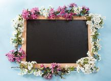 Blackboard with the spring flowers royalty free stock photography