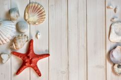 Blackboard with text, sea shells, rope and star fish decorations Royalty Free Stock Image