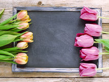 Blackboard with tulips. Black wooden table, top view on workplace Stock Photos