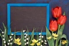Blackboard w błękit ramie z czerwonymi tulipanami i lelują dolina zdjęcia royalty free