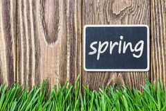 Blackboard with the words spring and green grass Royalty Free Stock Photos
