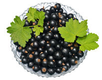 blackburn royaltyfria foton
