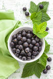 Blackcurrant Stock Foto's