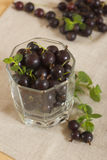 Blackcurrant berries. Fresh berries are filled in a transparent glass Royalty Free Stock Images