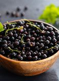 Blackcurrant berries with leaves, blackcurrant in a bowl. stock images