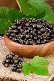 Blackcurrant Berries in Wooden Bowl Royalty Free Stock Photos