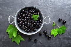 Blackcurrant bessen met bladeren, zwarte bes royalty-vrije stock afbeeldingen