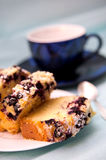Blackcurrant cake Stock Images