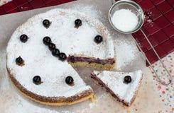 Blackcurrant cake Royalty-vrije Stock Afbeeldingen