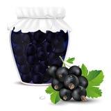 Blackcurrant compote in een kruik en verse blackcurrant Royalty-vrije Stock Foto's