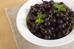Blackcurrant. Currant natural source of vitamin C Royalty Free Stock Image