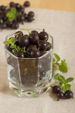 Blackcurrant in a glass. The glass  filled with blackcurrant Royalty Free Stock Photo