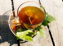 Blackcurrant herbal tea. With green leaves and berries, on wooden table outdoors Stock Photo