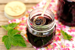 Blackcurrant Jam Royalty Free Stock Photo