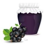 Blackcurrant jam in a jar and fresh blackcurrant Stock Photos