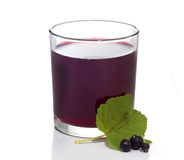 Blackcurrant juice in glass. Royalty Free Stock Image