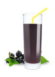 Blackcurrant juice Royalty Free Stock Photo