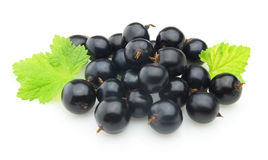 Blackcurrant with leaves Royalty Free Stock Photos