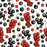 Blackcurrant and redcurrant pattern seamless Royalty Free Stock Images