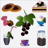 Blackcurrant. Stock Image