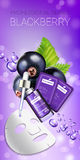 Blackcurrant skin care mask ads. Vector Illustration with blackcurrant smoothing mask and serum Royalty Free Stock Photography