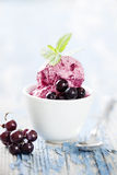 Blackcurrant sorbet Royalty Free Stock Photography