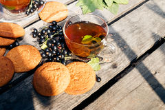 Blackcurrant tea and oatmeal cookies. On wooden desks outside, sunny summer day Stock Photos