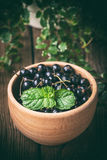Blackcurrant in wooden bowl. Stock Photography